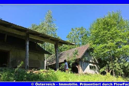 Keusche - einsam, auf einem kleinen Felshügel - 35 km Klagenfurt - 1746