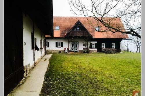 Kleiner, aber schmucker Reiterhof 40 km von Graz - 1860