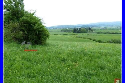5,8 ha landwirtschaftlicher, arrondierter Grund nahe Salzburg - 1714