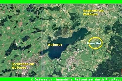 Bauernhof im Salzburgischen - 4 ha - 1729