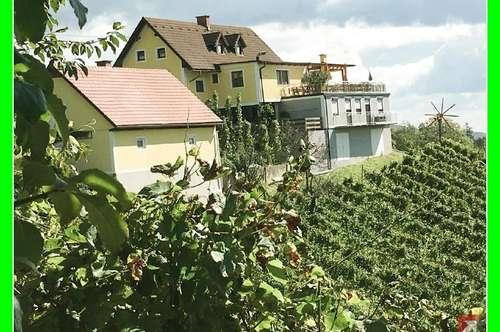 Top-Weingut an der süd-steierischen Weinstraße - 1747