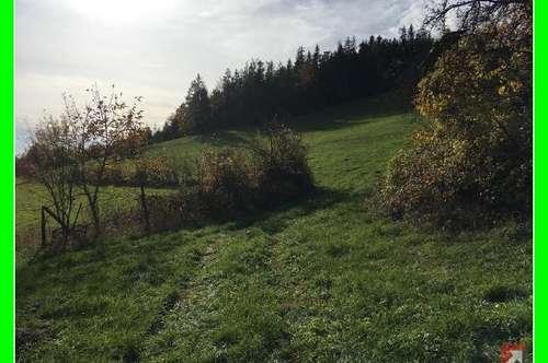 53 ha Wald + 10 ha Wiesen + 1000 qm Bauflächen bei Spitz - Wachau - 1748