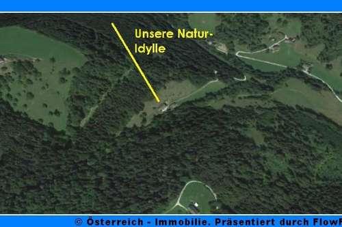 Bauernhaus mit 2 ha Grund in absoluter Ruhe- u. Alleinlage - 1836