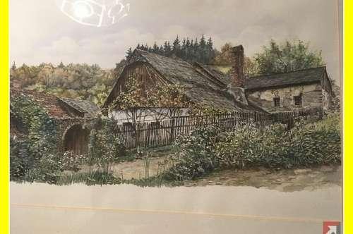 Landwirtschaft mit 63 ha bei Spitz - Wachau - 1748