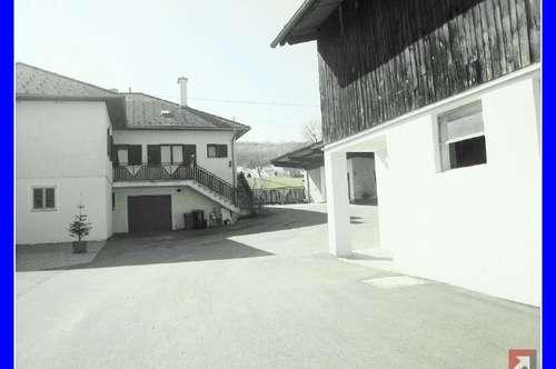2 große Hallen, Mehr-Familien-Wohnhaus .. und 2,9 ha Grund - 1698