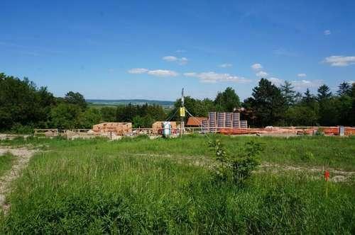 Sonniger Baugrund Nähe Burg Kreuzenstein