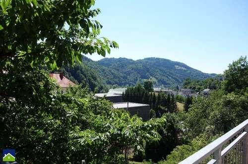 Besonders schöne Lage und charmante Raumaufteilung mit Donaublick!