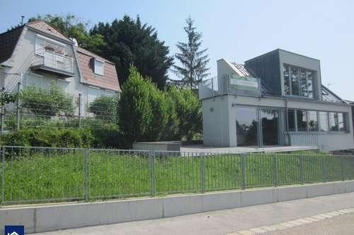 PROVISIONSFREI Modernes Einfamilienhaus Nähe American International School