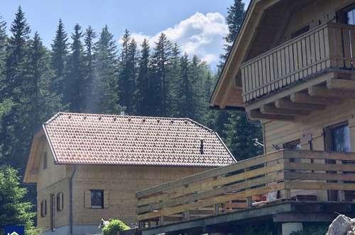 PROVISIONSFREI - KÄRNTEN/FLATTNITZ - ERRICHTUNG NEUER ALMHÜTTEN (80% der Grundstücke bereits verkauft!!)