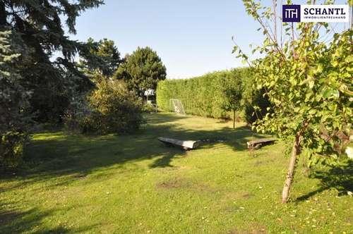 Grundstück in absoluter Ruhelage in Neu-Mitterndorf zu verkaufen!
