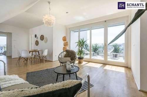 On Top - ohne Dachschrägen! Top 2-Zimmer-Wohnung im Neubau mit sensationellen Terrassen - PROVISIONSFREI - ab 05/2020.