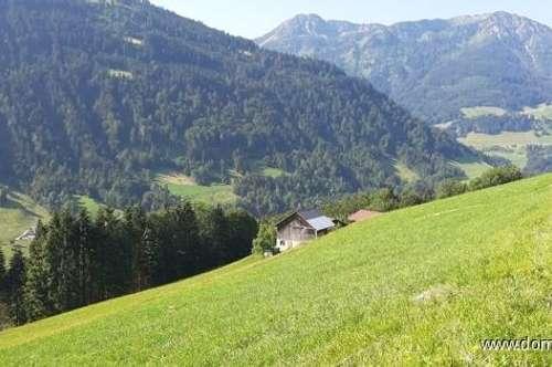 Baugrundstück, 670m² in schöner Hanglage mit Panoramablick in der Gemeinde Blons / Großes Walsertal!