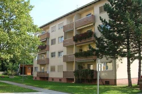 geräumige Single-Wohnung im 1. OG mit Balkon nahe dem Zentrum Voitsberg, sanierte Siedlung
