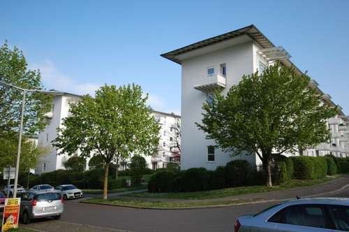 Sonnige und lichtdurchflutete Wohnung - großzügig geschnitten - toller Balkon mit Blick ins Grüne - provisionsfrei!