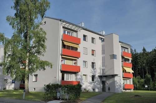 Schöne Familienwohnung mit Küche, Balkon und Lift - in einem neu sanierten Wohnhaus mit ausgewählter Nachbarschaft