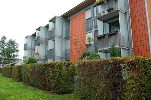 Solar City Pichling - geförderte, provisionsfreie 3 Zimmerwohnung, in zentraler und trotzdem naturnaher Ruhelage