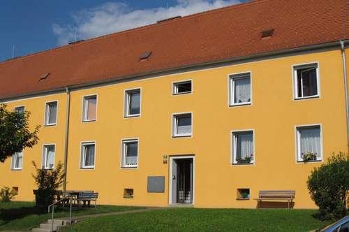 Sanierte, helle 2 Zimmer-Erdgeschoss-Wohnung in schöner Ruhelage mit Ganztagessonne
