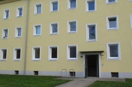 Sanierte Erdgeschoß Wohnung, 2 Raum im schönen Stadtteil Steyr Münichholz