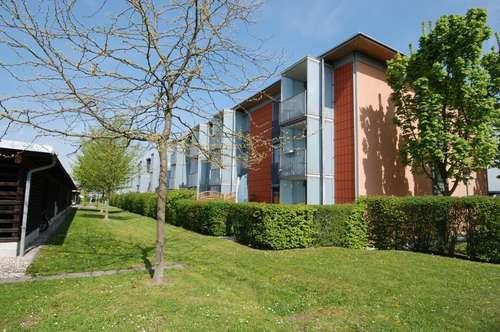 Den Traum vom Eigentum in Linz zu attraktiven Konditionen realisieren! Wohnen mit den Vorteilen einer Stadt und trotzdem im Grünen!