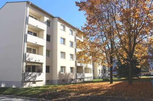 Lichtdurchflutete 79m² Wohnung mit Balkon, neuwert. Bad, Lift - in einer sonnigen Siedlung am Stadtrand