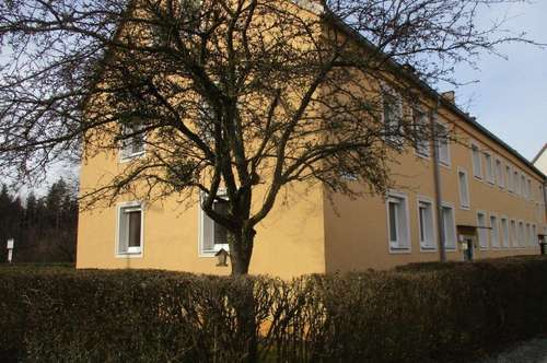 Sanierte Erdgeschoß Wohnung, 3 Raum, Bad mit Badewanne, gute Infrastruktur, im schönen Stadtteil Steyr Münichholz