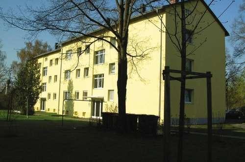 Top-Gelegenheit in einem sanierten Wohnhaus! Leistbare 2-Zimmer-Wohnung in ruhiger Grünlage am Wasserwald! 1A Infrastruktur - nahe am Linzer Zentrum!