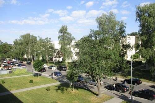 Sanierte 2 Raum Wohnung im schönen Stadtteil Steyr Münichholz, sehr gute Infrastruktur! Provisionsfrei!