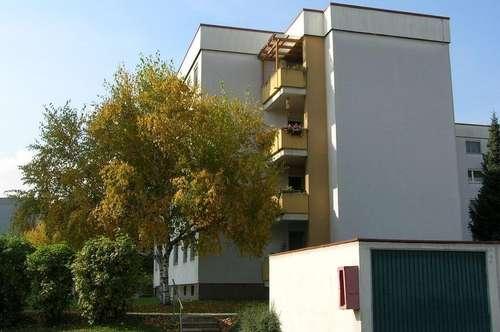 sonnige geräumige Familienwohnung mit 4 Zimmern im Erdgeschoss mit Balkon