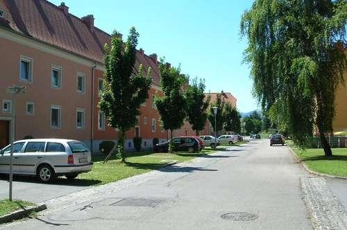 sonnige, geräumige, 4-Zimmer-Wohnung im 1. OG mit einem eigenen Garten, sanierte Siedlung