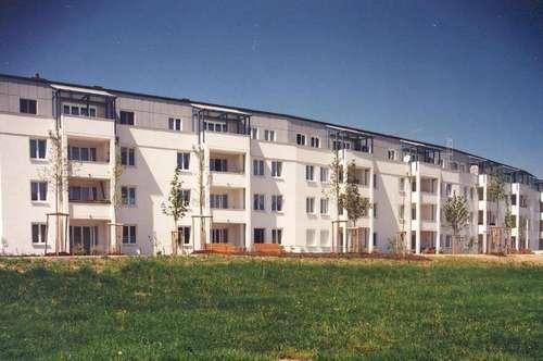 Ansprechende 3-Raum-Wohnung mit eigenem GARTEN in traumhafter Lage! Genießen Sie ein idyllisches Familienleben am grünen Stadtrand von Linz!