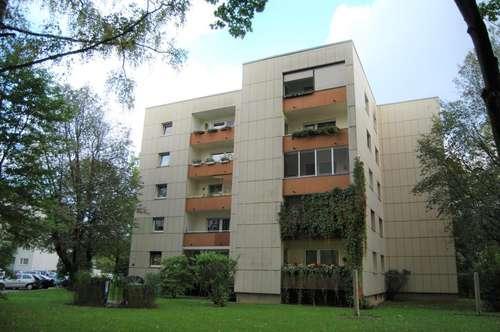 Bezaubernde 3-Raum-Wohnung in Toplage! Mitten im Grünen und dennoch zentral! Schöne Loggia und optimale Raumaufteilung! Provisionsfrei!