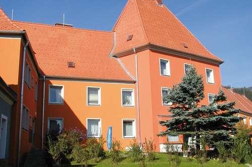 Provisionsfrei: Südseitige, gepflegte Single- oder Pärchenwohnung in sonniger Ruhelage in Fohnsdorf