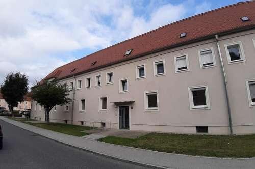 Wohnen wo Man(n) / Frau arbeitet - sanierte 3 Raum Wohnung im Erdgeschoß, Stadtteil Steyr Münichholz