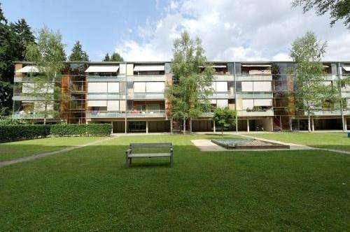 Modernes Wohnen im Holzhaus! Provisionsfreie 3 Raumwohnung mit Balkon & Carport am grünen Ortsrand