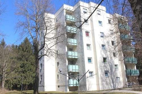 Provisionsfrei: Gepflegte 63 m² Erdgeschoss-Wohnung mit hübscher Küche, Balkon & Garage - ruhig am Waldrand