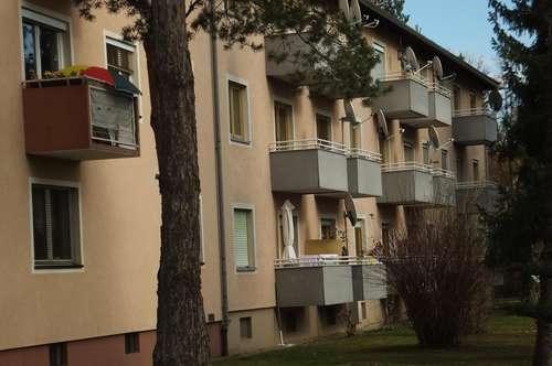 PROVISIONSFREI - Wagna - ÖWG Wohnbau - geförderte Miete - 2 Zimmer