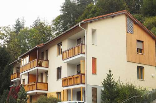 PROVISIONSFREI - Murau - ÖWG Wohnbau - geförderte Miete mit Kaufoption - 2 Zimmer