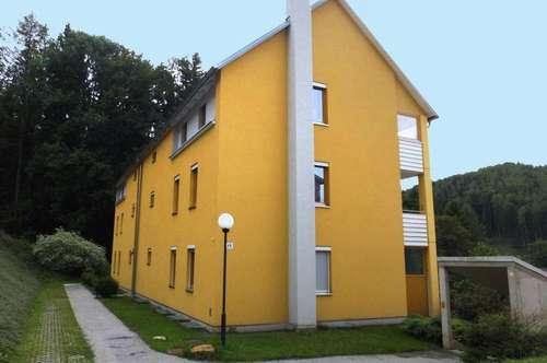 PROVISIONSFREI - Mürzzuschlag - ÖWG Wohnbau - geförderte Miete mit Kaufoption - 3 Zimmer