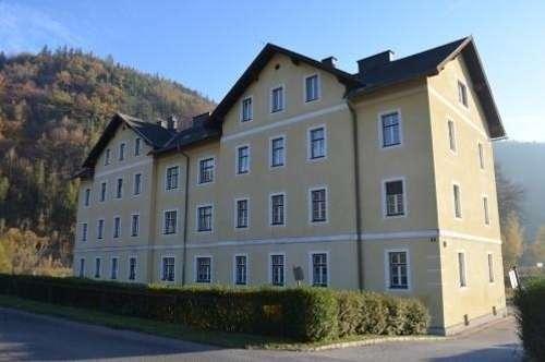 Mietwohnung in Heufeld bei Gloggnitz mit 48,25 m² (Top 10)