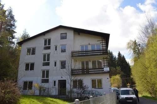 Mietwohnung mit 35,53 m² in Ofenbach bei Kirchberg am Wechsel.