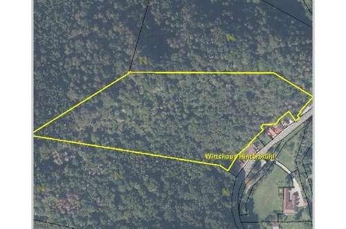 Waldgrundstück von 24.607 m² in Stixenstein
