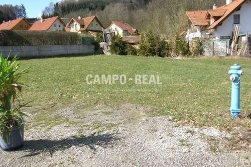 CAMPO-GRUND: Rotheau - Huber Wiese, Baugrund