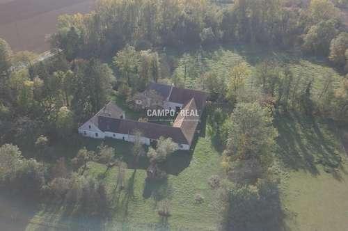 CAMPO-SONDEROBJEKT: Herrenhaus mit Mühle, viel Wald und Gewässer