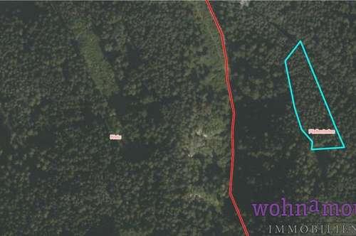Waldgrundstück in Pfaffenhofen zu verkaufen