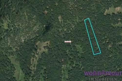 Waldgrundstücke unterschiedlicher Größe zu verkaufen