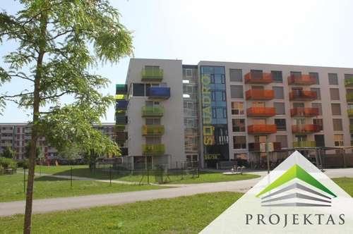 Lichtdurchflutete 2-Zimmerwohnung mit Balkon und Küche - Nähe Med-Uni - ab sofort verfügbar!