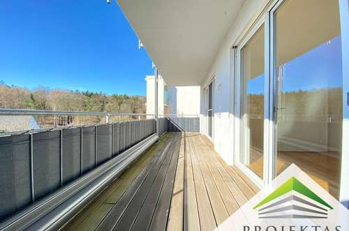 Traumhafte 3 Zimmerwohnung mit großer Loggia und Küche am Gründberg!