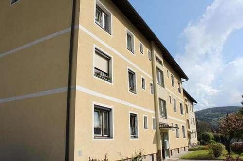 Döbriach am Millstätter See: Eigentumswohnung in ruhiger Lage!
