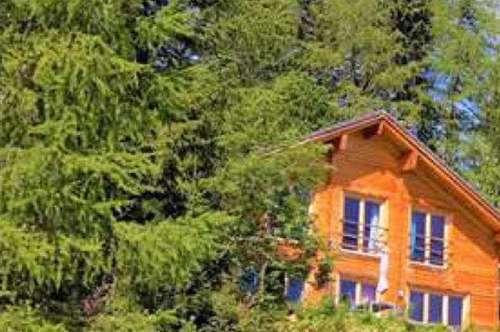 Wunderschönes Ferienhaus mit traumhaftem Ausblick auf der Turracher Höhe