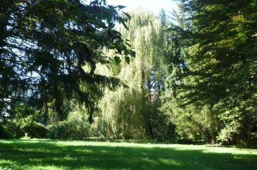 Baugrund in Grünruhelage, Altbaumbestand, Bauträger geeignet